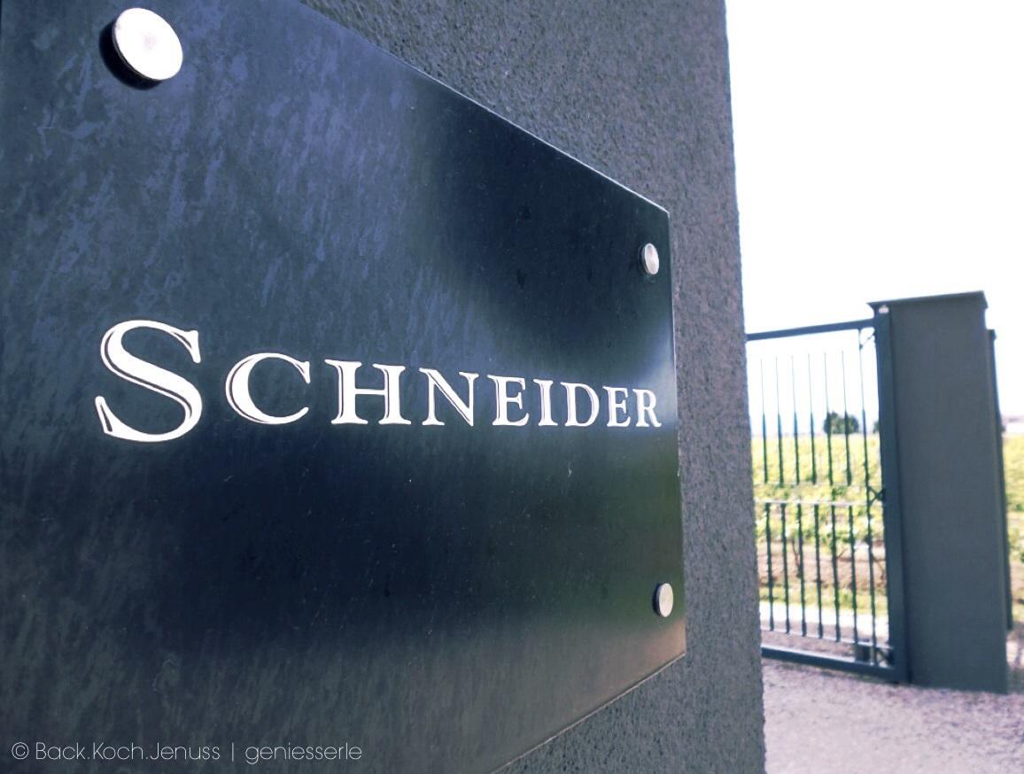Schneider_Schild